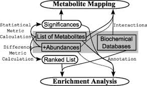 computational tools for the secondary analysis of metabolomics