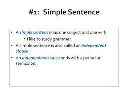 simple sentence lesson leopard print book bag
