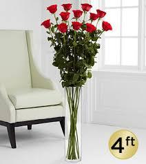 Long Stem Rose Vase The Ultimate Rose Long Stem Roses 5 U0026 6 Foot Roses Ftd