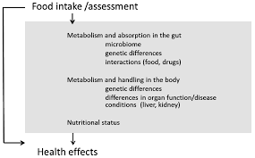 nutrients free full text nutrient status assessment in