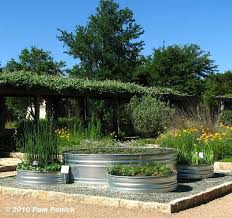 best 25 trough planters ideas on pinterest galvanized water