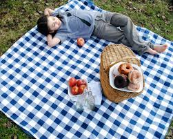 Outdoor Picnic Rug Organic Picnic Blanket Waterproof Picnic Blanket Blue