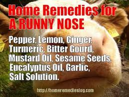Nose Meme - home remedies for runny nose stopping the sniffles naturally