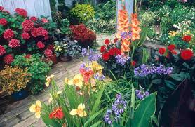 flowers gardens and landscapes landscape black container gardens with colorful flowers and some