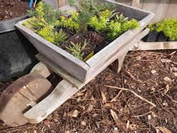 fall container gardening soil mix understanding bagged garden