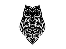 collection of 25 tribal owl sketch