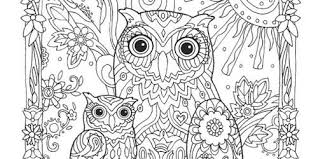 coloring page for adults owl owl coloring pages for adults fancy of owls regarding remodel 19