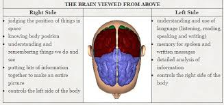 Which Part Of The Brain Consists Of Two Hemispheres The Psychology Of Color How To Use Colors To Increase Conversion Rate