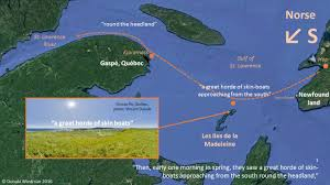 St Lawrence River Map Vinland Saga Maps The Sailing Route From Newfoundland Up The St