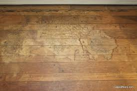 liquid wax for hardwood floors carpet vidalondon