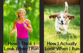 Sexy Women Memes - the 20 best running memes active
