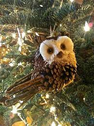 best 25 owl tree ideas on one peace cabin and