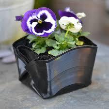 Indoor Flowering Plants by Indoor Flower Archives U2014 Marifarthing Blog