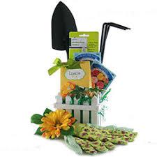 gardening gift basket gardening gift baskets ideas diygb springfever compellon us