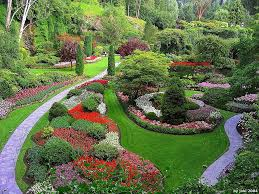 landscaping johns creek landscape company dream greener