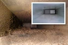port duct cleaning mold removal in port fl