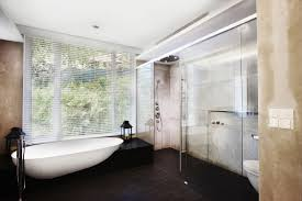 Bathroom Blinds Ideas Bathroom Blinds Next To Shower Healthydetroiter Com