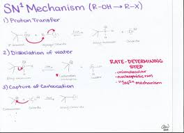 organic chemistry i study guides ashley u0027s biology study guides