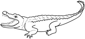 Crocodile 8 Animaux  Coloriages à imprimer