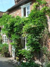 Cottage Rental Uk by Top 50 Henley On Thames Vacation Rentals Vrbo