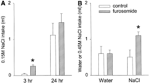 role of angiotensin in body fluid homeostasis of mice fluid