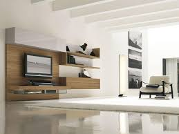 Living Room Cabinets Living Room Storage Cabinets With Doors The Most Suitable Home Design