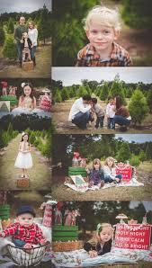 christmas tree farm mini sessions 2014 lake mary florida family
