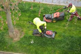 benefits of hiring a professional lawn care maintenance company