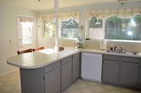 should i paint the inside of my kitchen cabinets home decoration