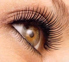 false eyelashes application removal u0026 storage
