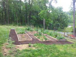 permaculture vegetable garden layout more information kopihijau