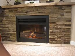 Dimplex Electric Fireplace Dimplex 30in Electric Fireplace Insert Dfb6016 Wesellit Waterloo