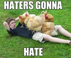 Haters Gonna Hate Meme - chicken meme haters gonna hate golfian com