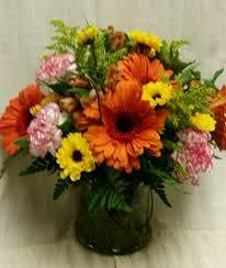 cheerful orange gerbera daisies and more in hampton falls nh