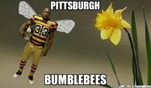Funny Pittsburgh Steelers Memes - pittsburg steeler offensive memes steeler best of the funny meme