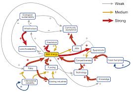 fuzzy cognitive maps a participatory workshop tool