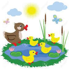 pond habitat coloring page virtren com