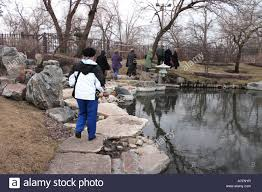 japanese garden on the southside of chicago in winter stock photo