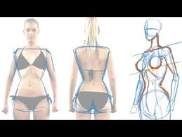 How To Draw Female Anatomy How To Draw The Female Figure And Torso Youtube