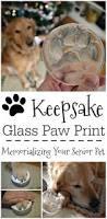 best 25 dog paw prints ideas on pinterest dog paws dog paw art