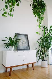 Modern Hanging Planters by Plants U0026 Planters I U0027ve Seen Lately U0026 Liked Plants Indoor And