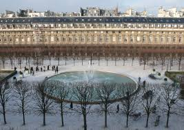 palais royal black friday 2014 wolves in the palais royal aussie in france