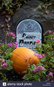 orange pumpkin and count dracula gravestone halloween decorations