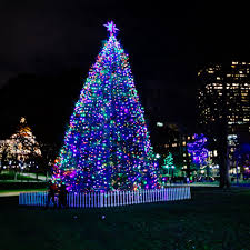 boston christmas tree lighting 2017 its christmas time in the city holidays in boston
