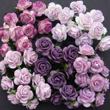 purple roses roses images pink and purple roses friendship wallpaper and