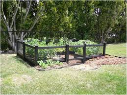 Small Backyard Vegetable Garden by Backyards Cool Wood Raised Bed Containers Enclosed Backyard