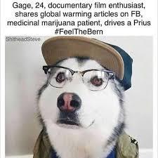Dog With Glasses Meme - funny dog wearing glasses loldamn com