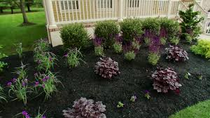 diy landscaping landscape design u0026 ideas plants lawn care diy