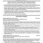 Director Of It Resume It Manager Resume Template Director Of It Resume Example Templates