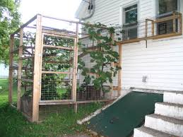 catio construction our tiny homestead